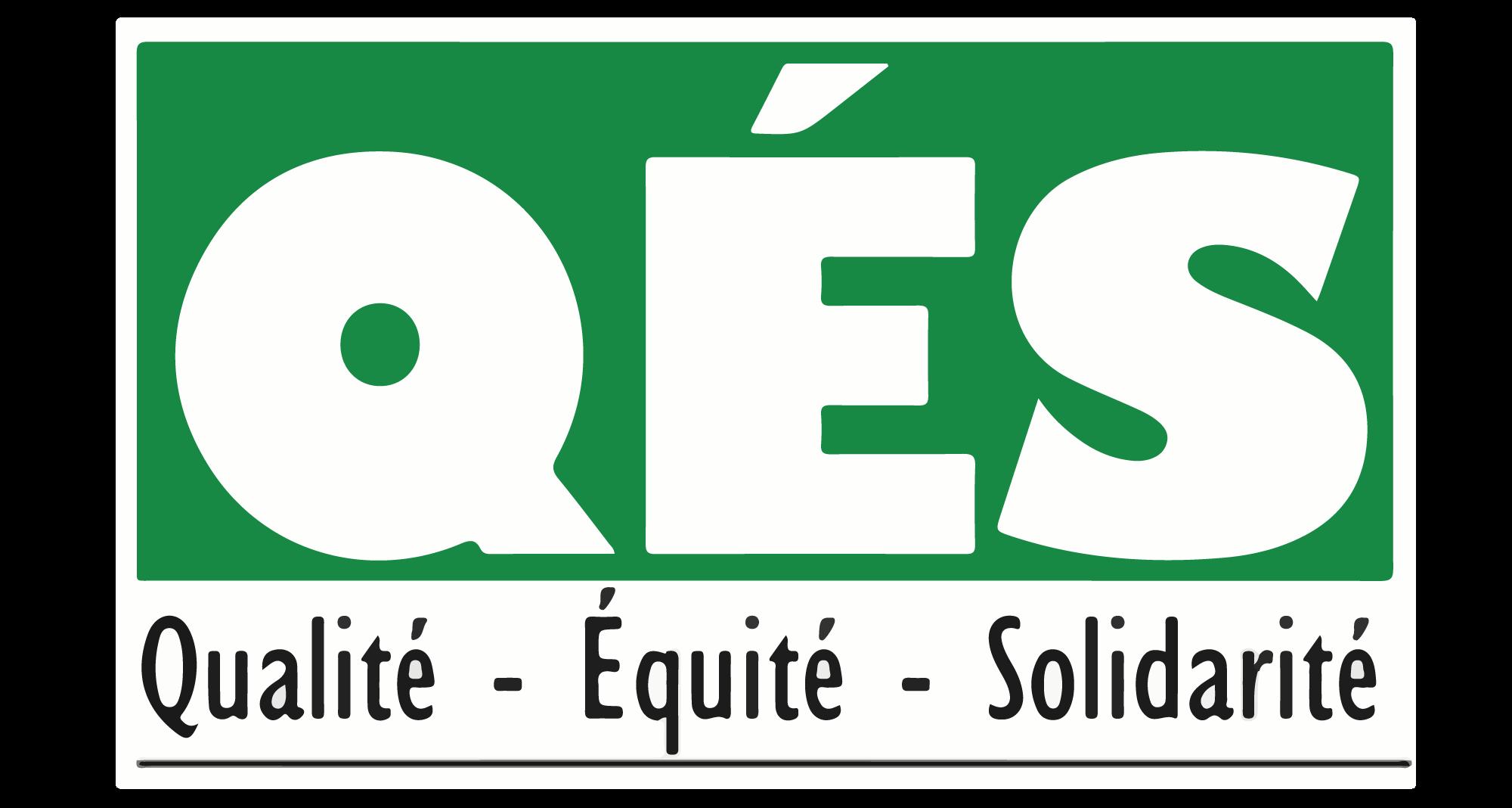 Logo QES