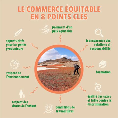8 points clés commerce équitable